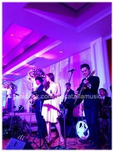 วงดนตรี งานเเต่งงาน