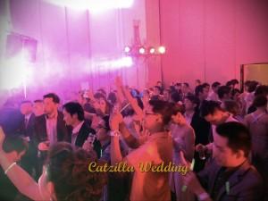 งานเเต่งงานCatzilla