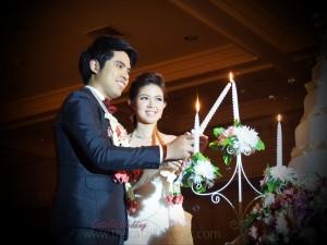 งานเเต่งงาน catzilla wedding